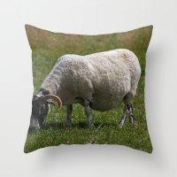 Sheep Baaaaa... Throw Pillow