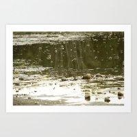 Cove by the lake Art Print