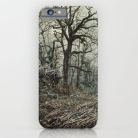 iPhone & iPod Case featuring Undergrowth by Ben Higgins