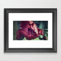 Peony Red Flower Framed Art Print