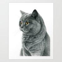 The Chartreux Portrait G… Art Print