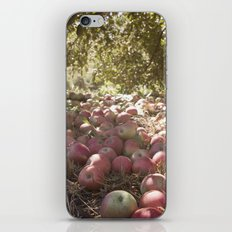 Under the Apple Tree iPhone & iPod Skin