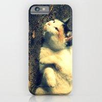 Tabby iPhone 6 Slim Case