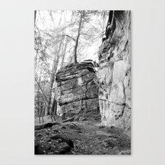 Perched Atop Canvas Print