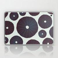 Sea's Design - Urchin Skeleton (Black) Laptop & iPad Skin