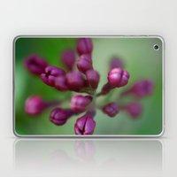 Arboretum Lilac Laptop & iPad Skin