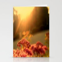 Pink bulb in the Sunrise Stationery Cards