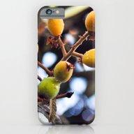 EXOTIC FRUIT iPhone 6 Slim Case