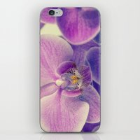 Orchid - Lilac Colored iPhone & iPod Skin