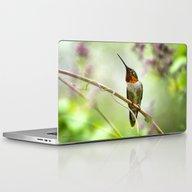 Hummingbird Passion Laptop & iPad Skin