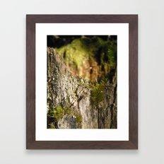 Fairy Castle Framed Art Print