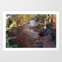 Mill River Art Print