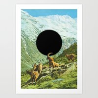 Lapse Of Nature Art Print