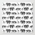 graphic zoo Canvas Print