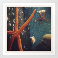 Art Print featuring starfish by sandra lee russell