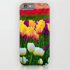 Fields of Color III, Woodburn Tulip Festival iPhone 6 Slim Case