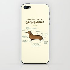 Anatomy of a Dachshund iPhone & iPod Skin