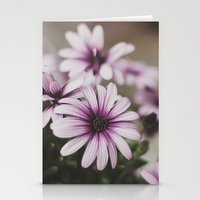 LILAC. Stationery Cards