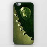 Leaf Drops iPhone & iPod Skin