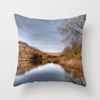 Millington Reflections Throw Pillow