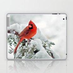 Cardinal on Snowy Branch (horizontal) Laptop & iPad Skin