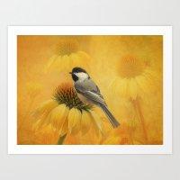 Little Chickadee Art Print