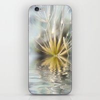 Dandelion fantasy iPhone & iPod Skin