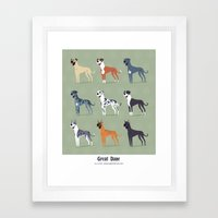 Great Danes Framed Art Print