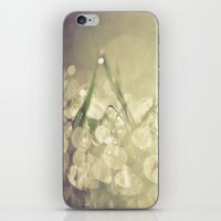 Morning Dew No.3 iPhone & iPod Skin