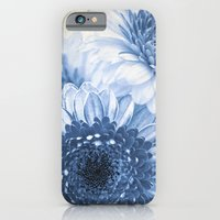 iPhone & iPod Case featuring Blue Gerbera  by Angela Dölling, AD DESIGN Photo + Photo