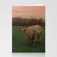 Scottish Highland Steer Stationery Cards