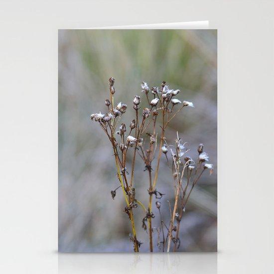 Frosty Seeds Stationery Card