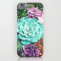 Succulent iPhone 6 Slim Case