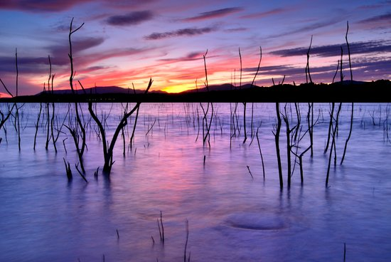 Purple sunset at the lake Art Print