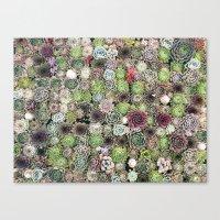 succulent party  Canvas Print