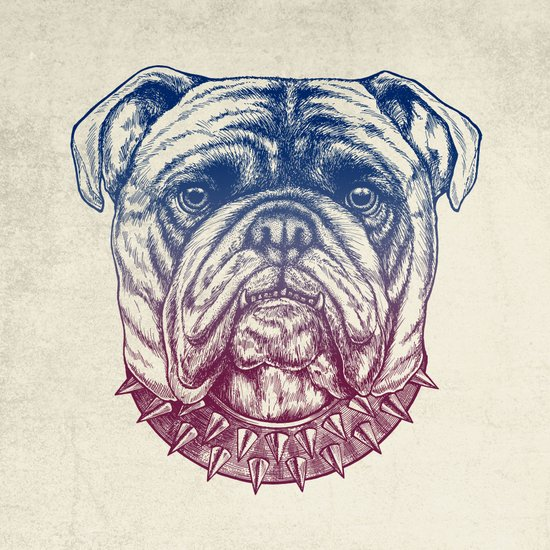 Gritty Bulldog Canvas Print