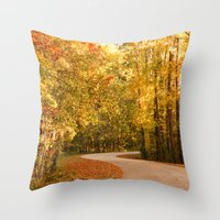 Just Around the Curve Throw Pillow