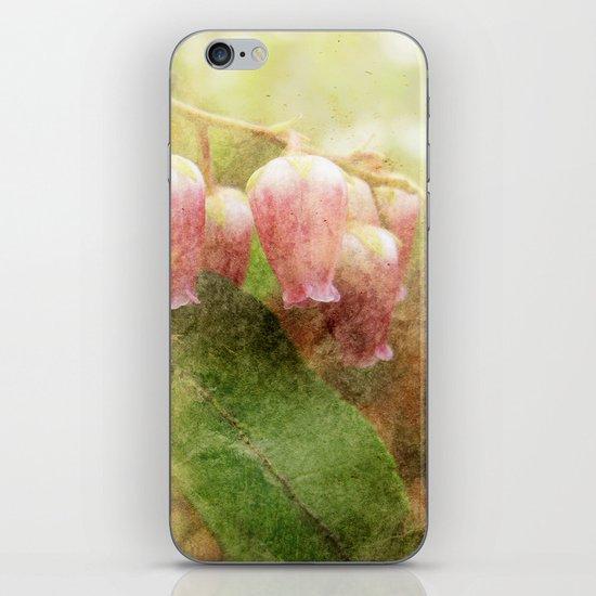 pieris japonica iPhone & iPod Skin