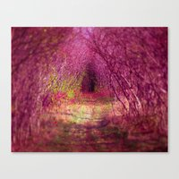 Into The Pink Canvas Print