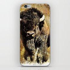 Rustic Buffalo iPhone & iPod Skin