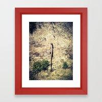 In My Path Framed Art Print