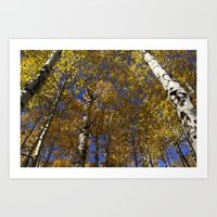 Autumn Hues Art Print