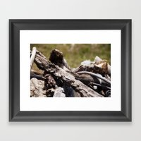 Kindling Love Framed Art Print