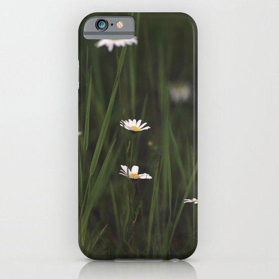 Daisy Days iPhone & iPod Case