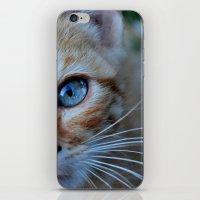 Cat eyes iPhone & iPod Skin