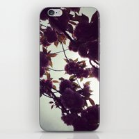 Evening Blossoms iPhone & iPod Skin