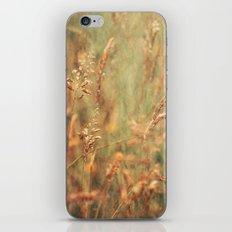 Meadow Grasses iPhone & iPod Skin