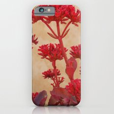 Rustic Flowers iPhone 6 Slim Case