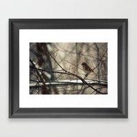 Winter friend. Framed Art Print