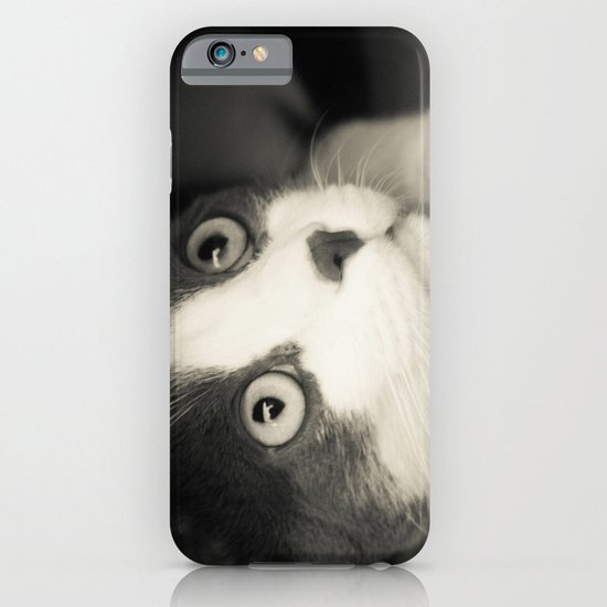 What do you think Mr Cat? iPhone & iPod Case